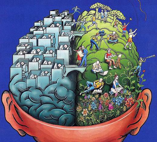 brain_sides