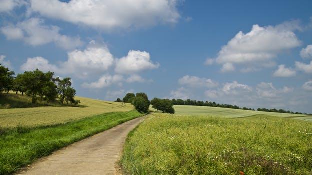 field-away-summer-sky-67211